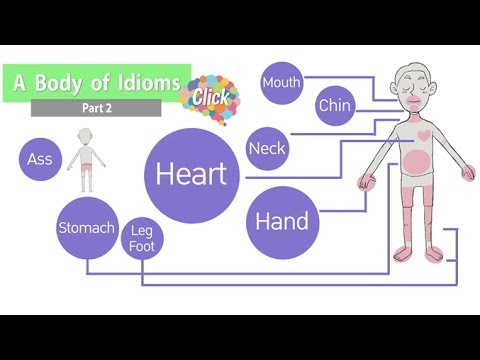 A body of idioms Part2